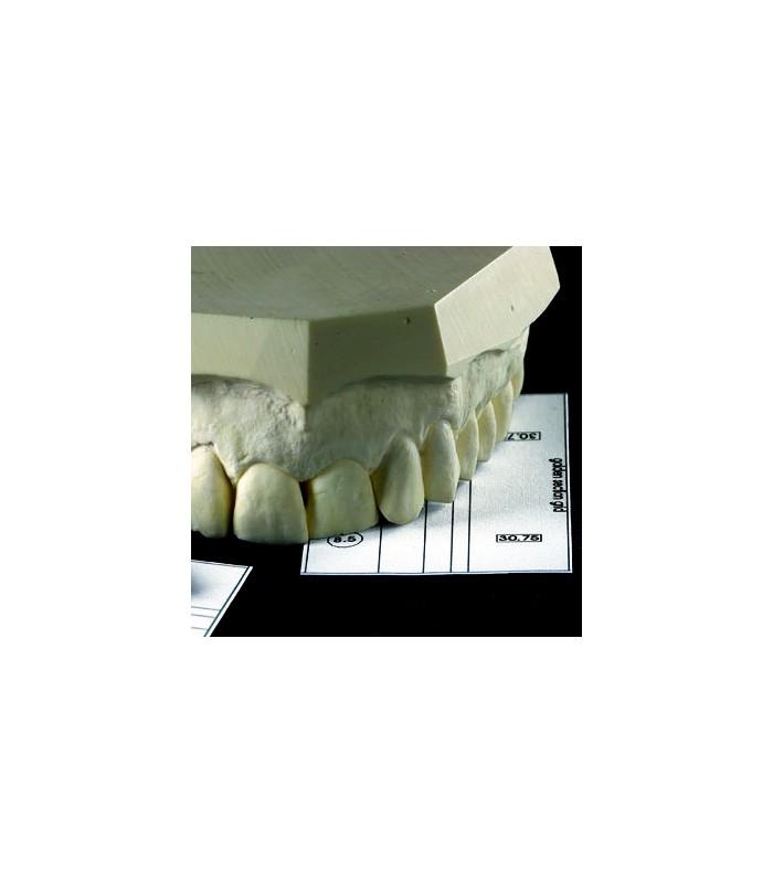 golden section divider set smile line europe gmbh